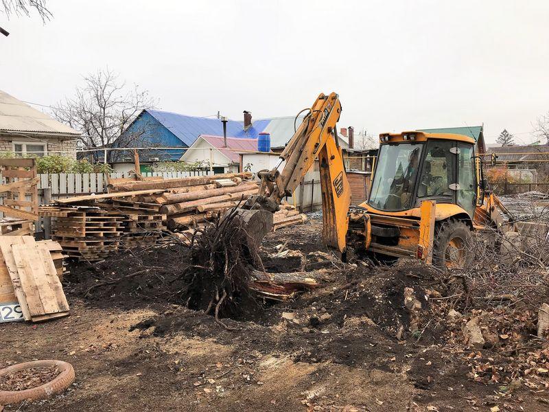 расчистка участка от деревьев
